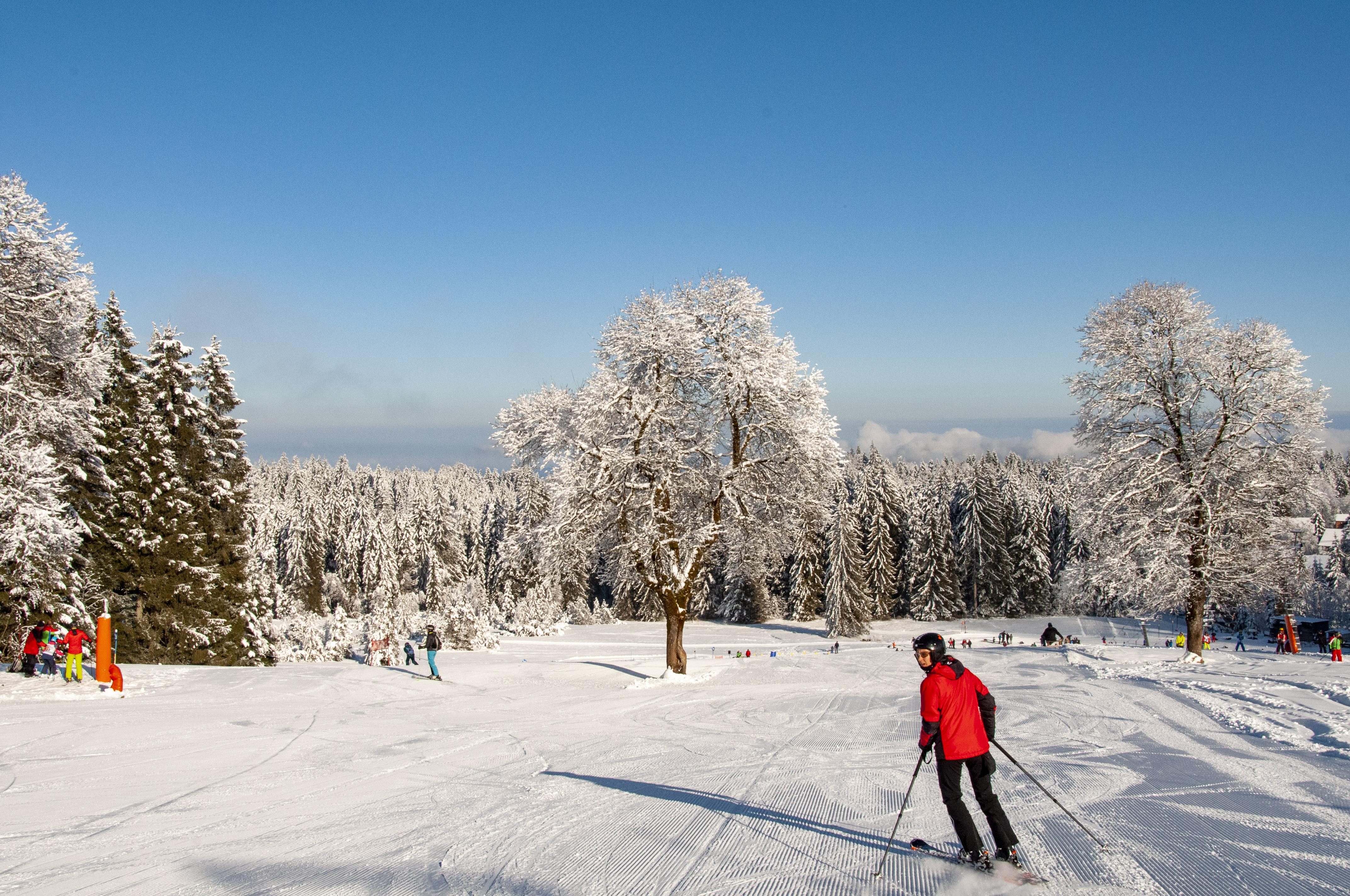 Skigebiet Bödele, Oberlosen / Copyright© Jürgen Kostelac, Tarifgemeinschaft Bödele